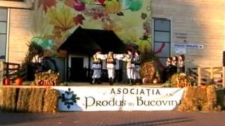 Ansamblul folcloric Florile Bucovinei Rădăuți