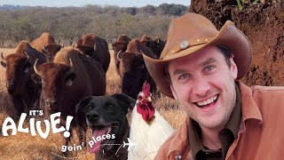 Brad Goes Ranching in Texas   It's Alive: Goin' Places   Bon Appétit