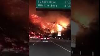 حريق في امريكا مدينة كاليفورنيا 18+