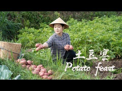 又到了土豆成熟的季节,来一桌土豆宴,还原奶奶和妈妈的味道!【滇西小哥】