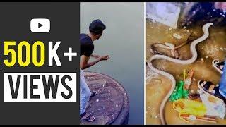 മീൻ പിടുത്തം എന്ന് പറഞ്ഞാൽ ഇതാണ്   അടിപൊളി fish crabbing   ആരൽ മീൻ