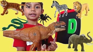 Learn Alphabets And Phonics With Magnetic Letters And Toy Animals/Learn Sounds And Abc