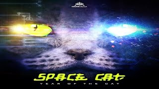 Space Cat - Loops of Insanity ᴴᴰ