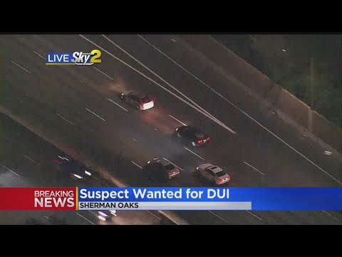 Xxx Mp4 Possible DUI Driver Leads Police On Wild Chase 3gp Sex
