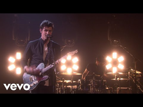 Download Shawn Mendes - In My Blood free