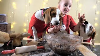 Little girl surprises her dogs with christmas cookies | Charlie the dog and Baby Laura