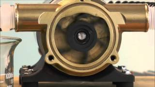 Jabsco - How Does An Impeller Pump Work?