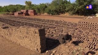 Sudan - Tuti Island