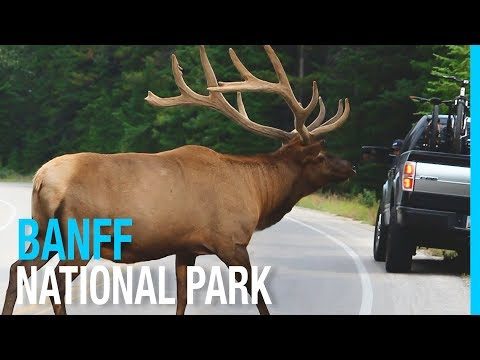 BANFF NATIONAL PARK & LAKE LOUISE RV LIFE IN CANADA