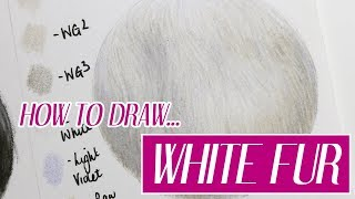 REALISTIC WHITE FUR | Coloured Pencil Tutorial | Christmas Advent Day 3 🎄