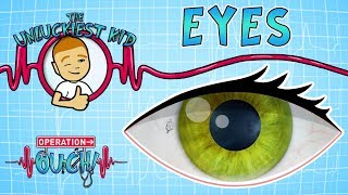 Science for kids | Body Parts - EYES | Experiments for kids | Operation Ouch