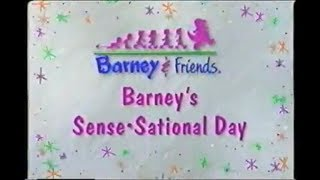 Barney's Sense-Sational Day Custom Theme