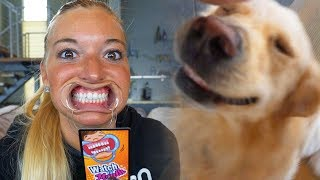 DOGS vs FUNNY MOUTH GAME (Super Cooper Sunday #128)