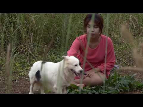 Xxx Mp4 𝑇𝑁 𝑅𝑒𝑎𝑙𝑙𝑖𝑓𝑒 سب سے اوپر ہوشیار اور خوبصورت کتے کی ویڈیو خوبصورت لڑکی کو کھیلنے اور بیل کتے کو گڑھ 3gp Sex