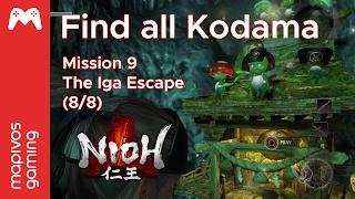 Nioh Guide - All Kodama: Mission 9: The Iga Escape (8/8)