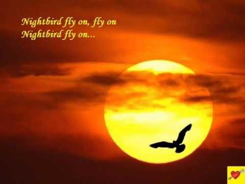 Nightbird by Kalapana