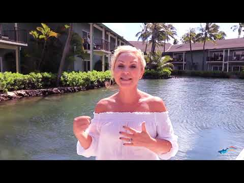 Xxx Mp4 Actress Leigh Allyn Baker Swims With The Dolphins At Dolphin Quest Oahu 3gp Sex