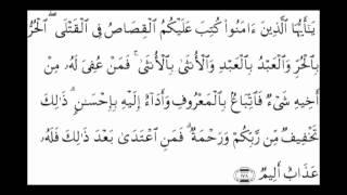 02 Surah al Baqarah Ayat 177 to 186 (Abdul Bassett) Verse By Verse