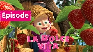 Masha and The Bear - La Dolce Vita (Episode 33) New episode 2016!