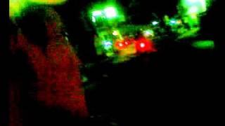 Laba-laba merah zimbabo'e -  bunga ku.mp4