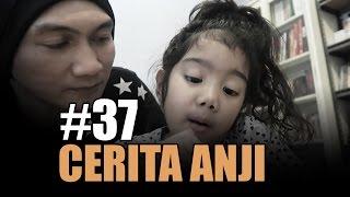 LETICIA LEBIH BAIK TINGGAL SAMA SIAPA? | #CeritaAnji - 37