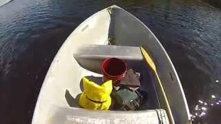 Gourley Lake walleye