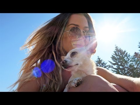 Beach Day, Friends & Weekend fun  ☼  Daily Vlog | 3d Oct 2015