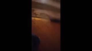 دعوای جنده ها در میر داماد تهران - jende fight