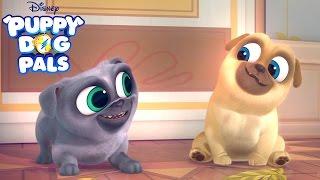 Series Trailer   Puppy Dog Pals   Disney Junior