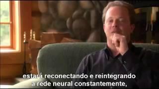 QUEM SOMOS NÓS - DOCUMENTÁRIO LEGENDADO