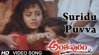Anthapuram Movie | Suridu Puvva Video Song | Sai Kumar, Jagapathi Babu, Soundarya