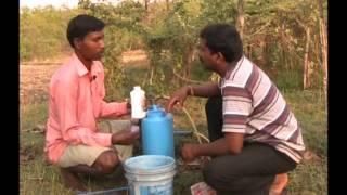Protection measure for Little gourd Oriya Varrat Odisha