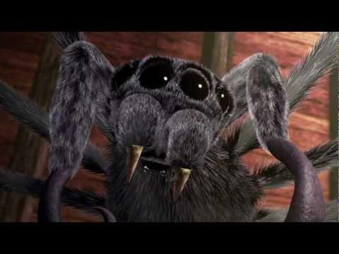 Spider s Walk