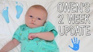 Baby Owen 2 Weeks Old Update