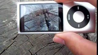 видеокамера ipod 5G.mp4