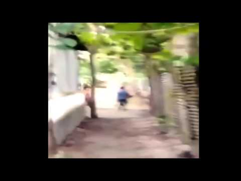 বাংলা দেশি জগরা