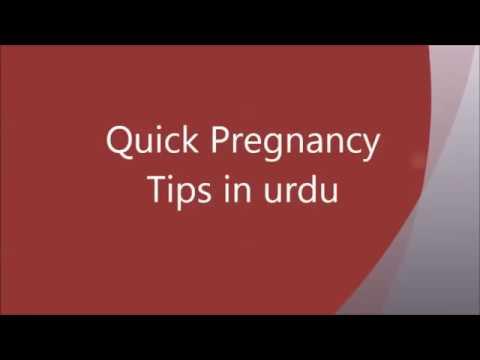 Xxx Mp4 Jaldi Hamal Ke Liye Sex Karnay Ka Tarika Sex Tips For Quick Pregnancy 3gp Sex