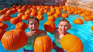 POOL FILLED WITH PUMPKINS **HALLOWEEN SPECIAL**