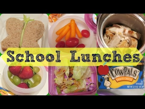 Xxx Mp4 School Lunches 6 Days Of HOT And Cold School Lunches 3gp Sex