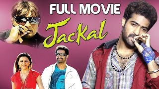 New release of Jr. NTR 2017 movie | Telugu Movie Kantri | Jackal dubbed in english
