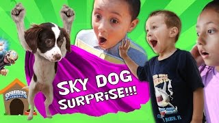 THE SKYLANDER DOG SURPRISE!! (Sky Kids Get a Puppy from Kaos?)