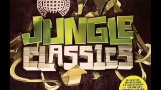 Jungle Classics - 6 Million Ways To Die (Original Mix)