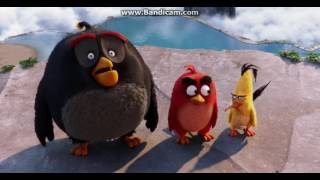 The Angry Birds Movie - Red, Chuck and Bomb found the Mighty Eagle