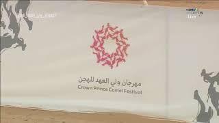 🎥 ||فيديو #مهرجان_ولي_العهد_للهجن (الفترة الصباحية) يوم الأثنين ٣-٩-٢٠١٨م