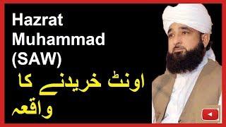 How Hazoor SAW bought Camel - Alama Saqib Raza Mustafai - MUST LISTEN