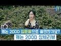 [최마태] 캐논 200D 입문용으로 적합한가요? 캐논 200D 상세리뷰 + 필드테스트 (feat. 리플s 진아)
