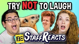 Try to Watch This Without Laughing or Grinning #10 (ft. FBE STAFF)