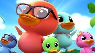 Five little Ducklings | Duck Song | Nursery Rhymes | Baby Rhymes