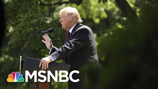Donald Trump Says Immigration Plan Will Replace Green Cards And Incorporate Civics Exam | MSNBC