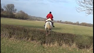 Alice & Defender take on The Ledbury Hunt Murrells End Meet. 9th January 2015